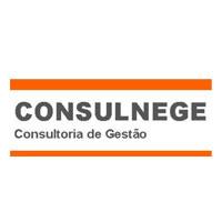 CONSULNEGE (Consultoria de Gestão)