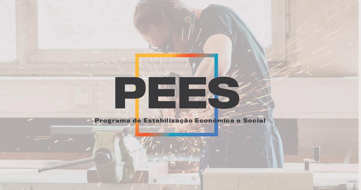 PROGRAMA DE ESTABILIZAÇÃO ECONÓMICA E SOCIAL (PEES)